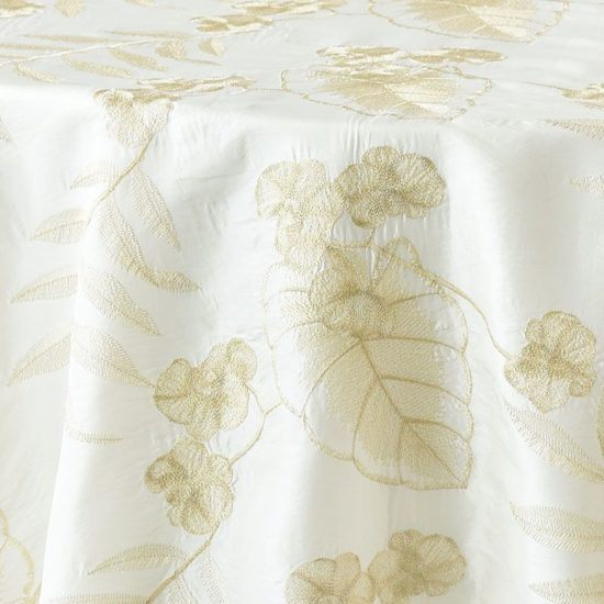 ivory and gold orchid - close up