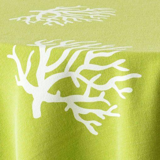 chartreuse coral closeup